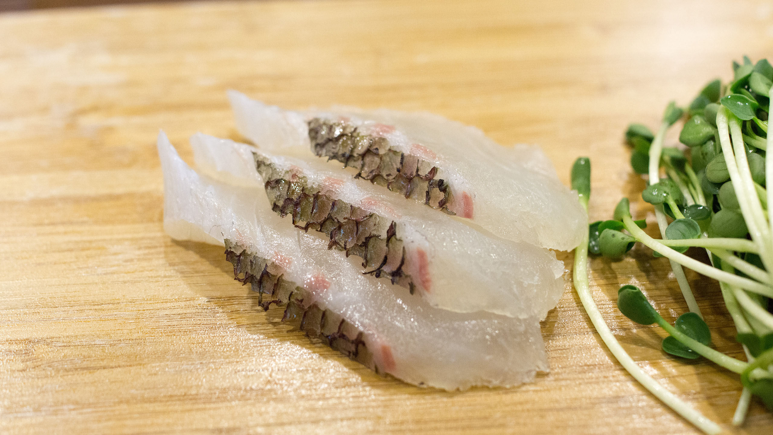 마츠카와 타이
